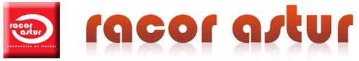 Racor Astur-Web subvencionada de la Empresa adherida al programa Un Negocio Una Web