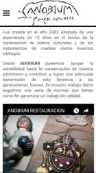 Versión móvil de Web de Anobium Restauración