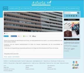 Visión de la web completa de Asturla