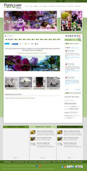 Visión de la web completa de Flores Lupe Gijon