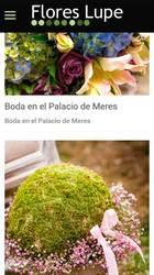Versión móvil de Web de Flores Lupe Gijon