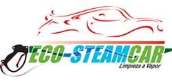 PROGRAMA UN NEGOCIO, UNA WEB - Eco-SteamCar Limpieza a Vapor