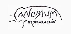 PROGRAMA UN NEGOCIO, UNA WEB - Anobium Restauración