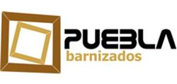 PROGRAMA UN NEGOCIO, UNA WEB - Barnizados Puebla