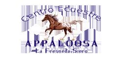 PROGRAMA UN NEGOCIO, UNA WEB - Centro Ecuestre Appaloosa