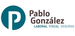 PROGRAMA UN NEGOCIO, UNA WEB - Pablo asesor